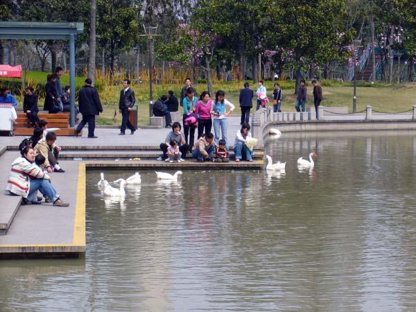 中午在公园随便拍拍