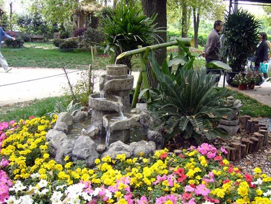 植物园·南翔小笼包
