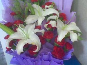 苦夏 鲜花 母亲节