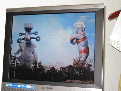 东京蹭饭 1Q84终入手